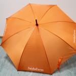 sateenvarjo, sateenvarjot, sateenvarjoja, sateenvarjo painatuksella